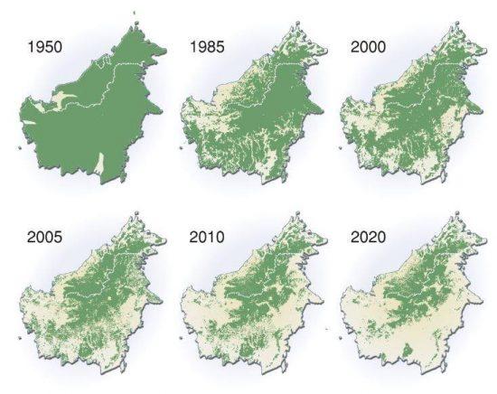 マレーシア・サラワク州の森林の変遷