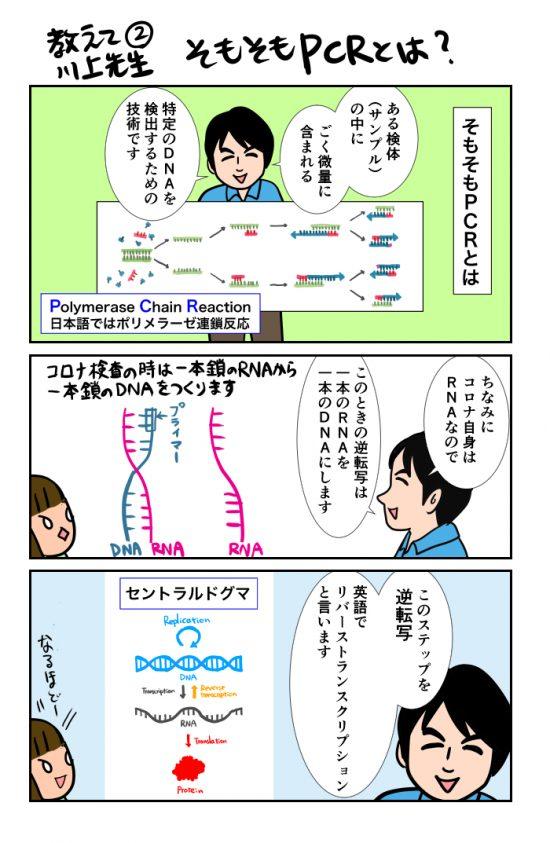 teachmedrkawakami (2)