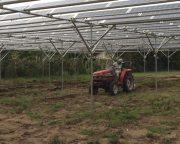 光太陽農園