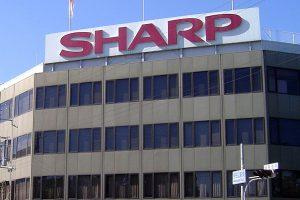 sharp01