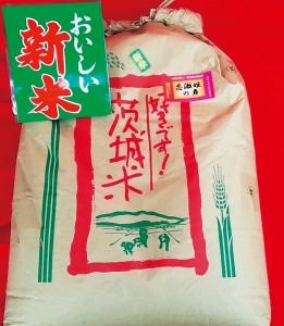 つくば山麓厳選コシヒカリ(恋瀬姫の舞)玄米20kg(28年新米)