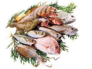 平戸地魚詰合せ