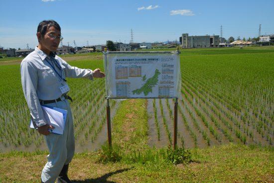 種子の生産を継続することとなった新潟県