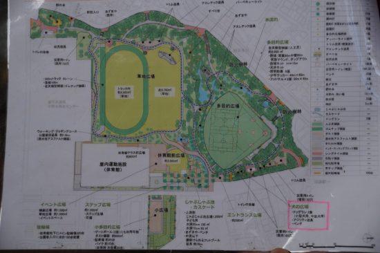 中野区が作成した公園の再整備予想図。左側の草地広場(黄色い部分)の半分が陸上トラックになる (Large)