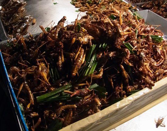 バンコクの屋台の昆虫料理