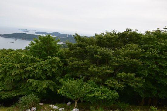 大六天駐車場から女川町塚浜、塚浜地区を望む