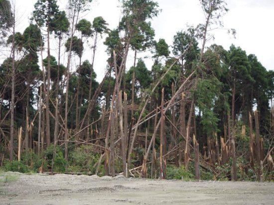 土中環境変化の影響