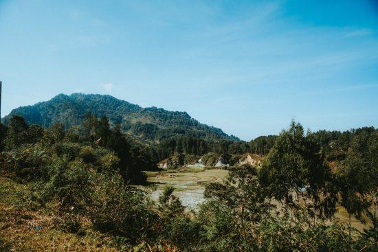 タナトラジャでは棚田が主流であり、あちらこちらで見られる