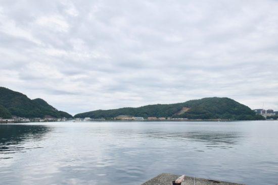 内浦湾より撮影した高浜発電所全景2
