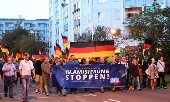 AfD demonstration
