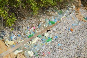漂着プラスチックごみ