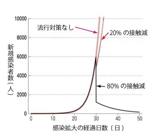 新規感染者数の推移