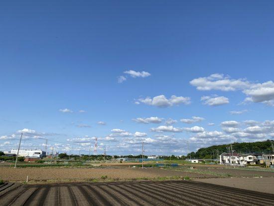 農地イメージ3