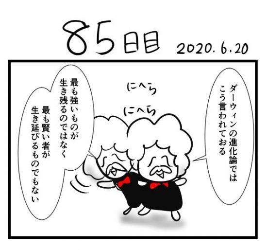 houkai85-1