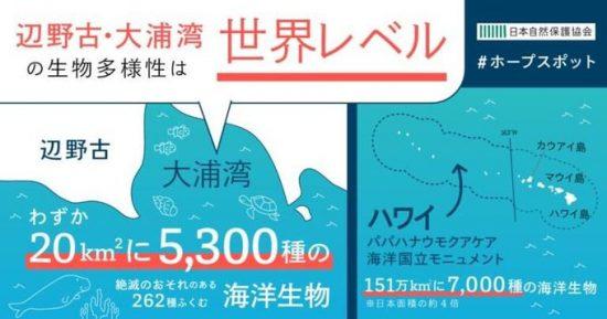 日本自然保護協会のインフォグラフ