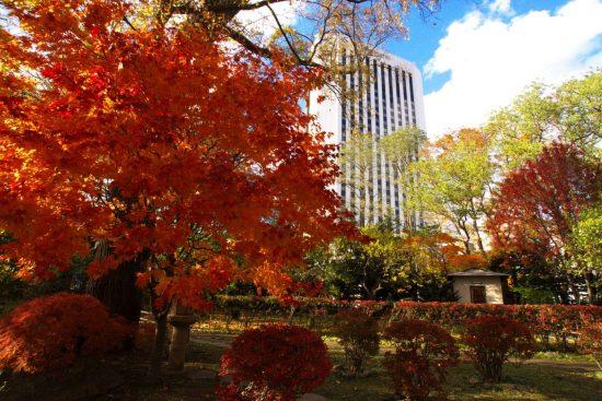 札幌市・中島公園