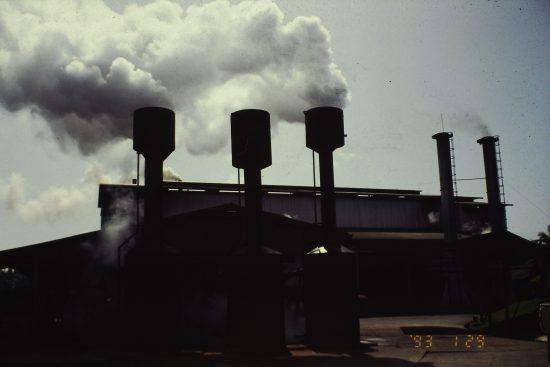 ヤシ油の精製工場。一年中稼働するためには市町村一つ分のプランテーションを必要とする