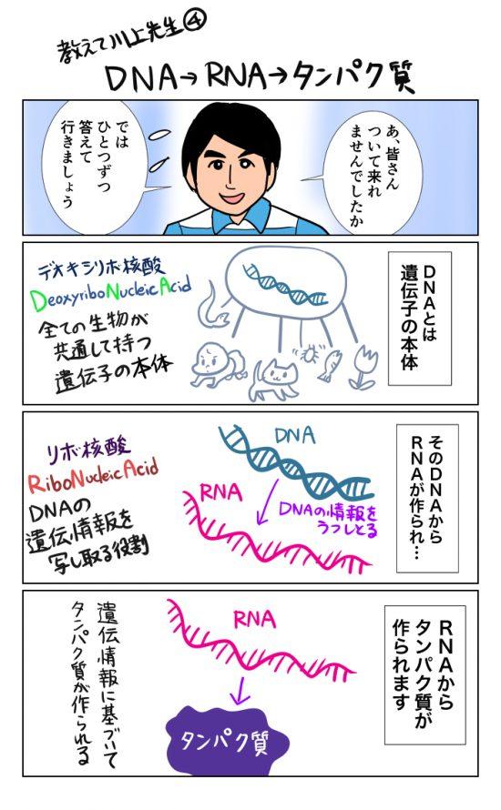 teachmedrkawakami (4)