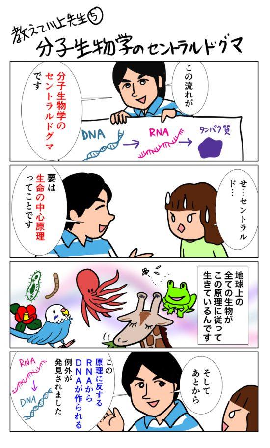 teachmedrkawakami (5)