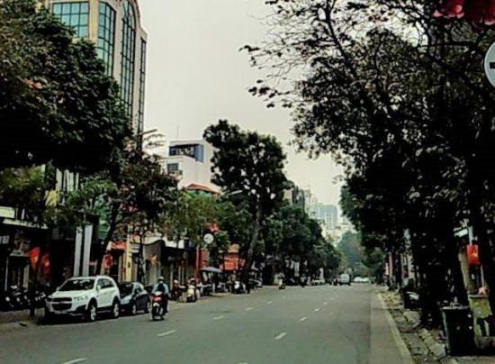 テト(旧正月)時の街並み