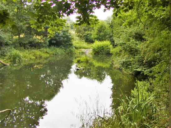 「公有地」(Common)と呼ばれる広大な緑地帯